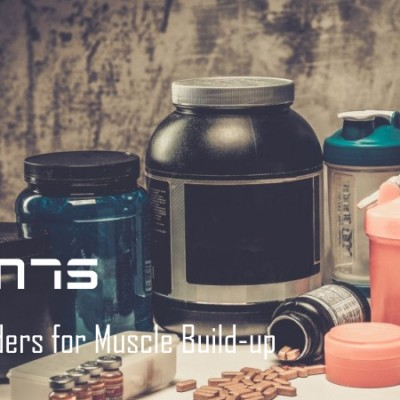 Top 11 Ultimate Protein Powders for Muscle Build-up