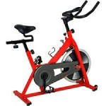 Sunny SF-B1001 Indoor Cycling Exercise Bike