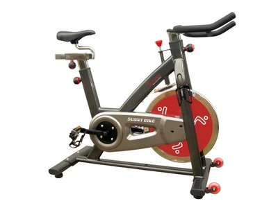Sunny SF-B1002 Indoor Cycling Exercise Bike