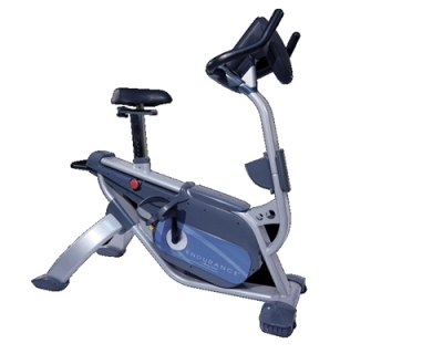 Endurance B5U Upright Exercise Bike