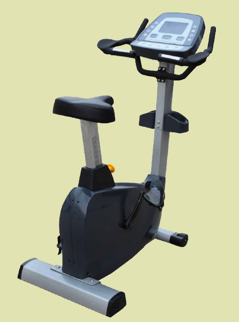 Cosco HS-001 Upright Exercise Bike