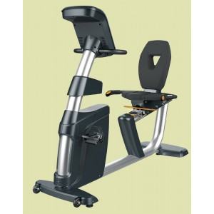 Cosco RR-500 Exercise Bike