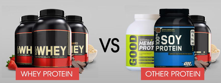 Whey Protein Comparison to Other Protein Supplements
