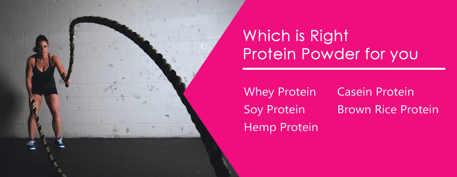 Choose from These Protein Powders My Lady!